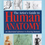 K15_Bammes_The-Artists-Guide-to-Human-Anatomy_